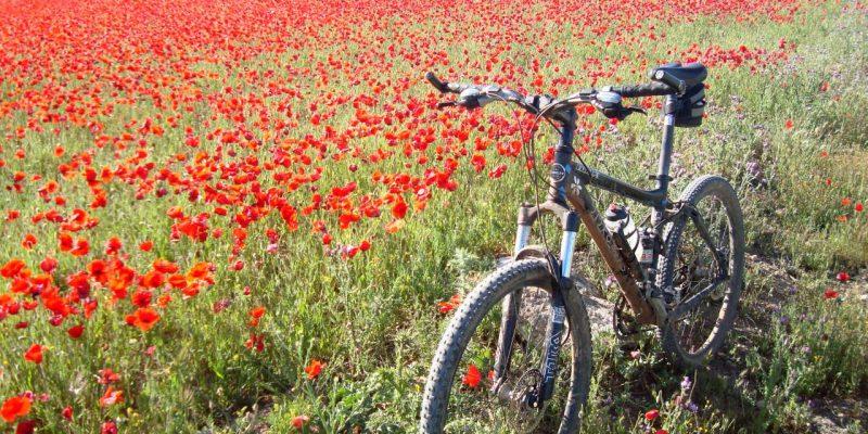 """""""30 días en Bici"""" llega a Albacete!"""